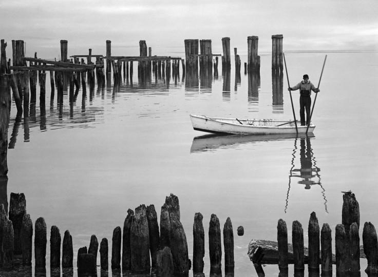 1948: Oyster Tonger (A. Aubrey Bodine/Baltimore Sun)