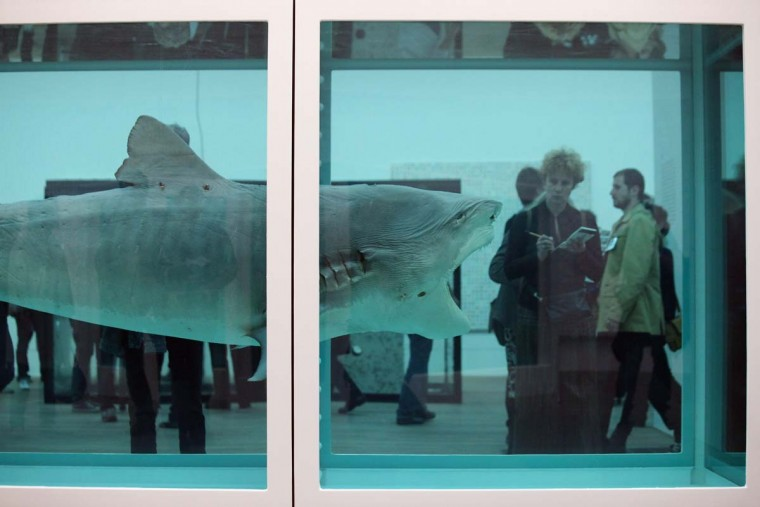"Members of the public admire an artwork by Damien Hirst entitled ""The Physical Impossibility of Death in the Mind of Someone Living."" (Oli Scarff/Getty Images)"