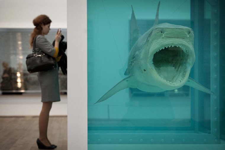 "A woman looks at a creation by Damien Hirst entitled ""The Physical Impossibility of Death in the Mind of Someone Living."" (Ben Stansall/AFP/Getty Images)"