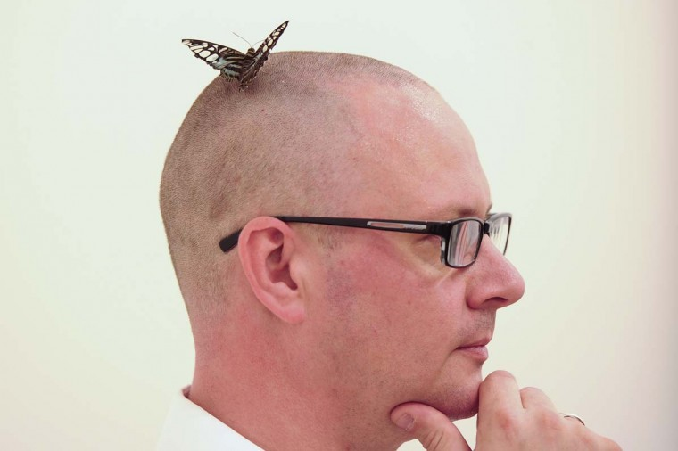 "A butterfly lands on the head of a gallery assistant in a display room entitled ""In and Out of Love"" by British artist Damien Hirst. (Carl Court/AFP/Getty Images)"