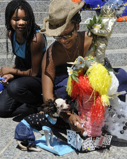 "The American Visionary Art Museum held its annual Pets on Parade outside the museum on July 4, 2010. The Grand Pet Prize went to ""Jaylin,"" a teacup Chihuahua, owned by Jurea Williams, 21, right, who dressed her dog in a tribute to Michael Jackson, including a bootie on one paw. At left is Jurea's sister, Kevea Hoyle, 10. At right is the trophy she received from the museum. (Algerina Perna/Baltimore Sun)"