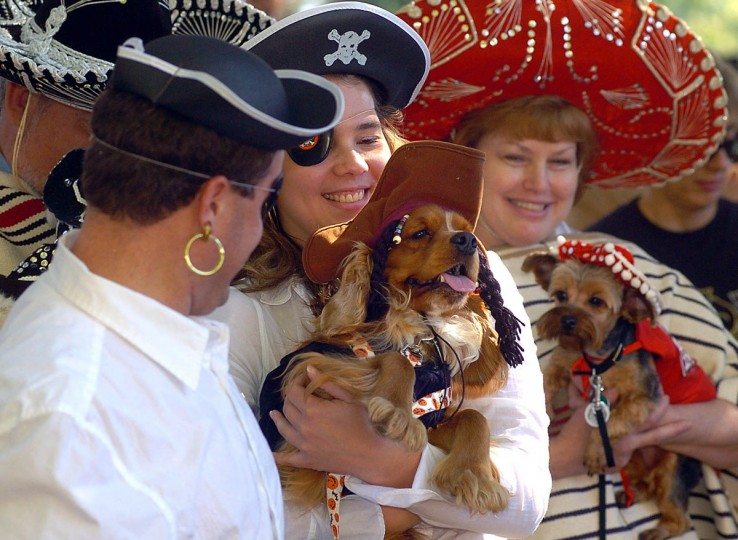 "Paul Spence and Kelly Szajna, of Owings Mills, wear matching pirate costumes for the owner-dog look alike costume contest at the annual Paws On Parade on April 19, 2011. Their cocker spaniel Rusty sports a ""Pirates of the Caribbean"" movie character Captain Jack Sparrow outfit. Bob and Jean Ewing, in background, in matching sombreros and ponchos, won as the crowd favorite with their maltese, Matilda, and Yorkie, Maggie. (Karen Jackson/Patuxent Publishing)"