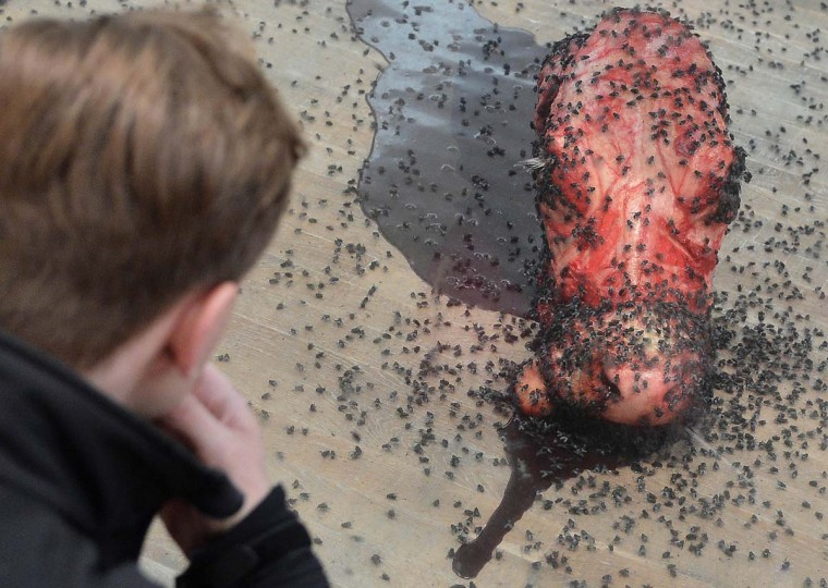 "A visitor views ""A Thousand Years"", flies feeding off a cow's head by British artist Damien Hirst. (Toby Melville/Reuters)"