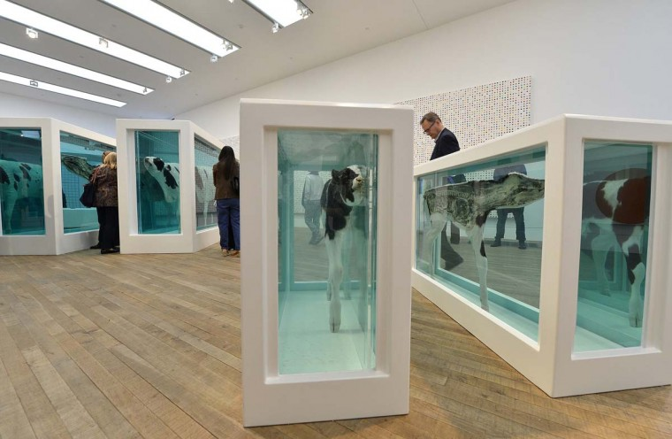 "Visitors view ""Mother and Child Divided"", a bisected cow and calf by Damien Hirst at the Tate Modern gallery. (Toby Melville/Reuters)"