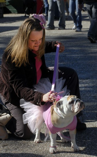 The Baltimore Animal Rescue and Care Shelter held a BARCStoberfest celebration in Patterson Park, including a pet costume contest, on October 28, 2007. Christine Morgan, 30, from Baltimore county, fixes her English Bulldog, Stella's princess costume. (Baltimore Sun)