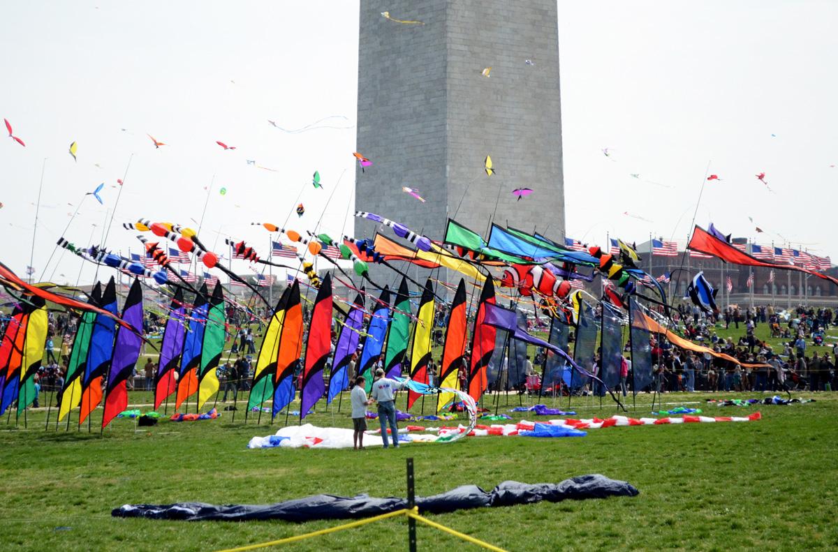 The Blossom Kite Festival