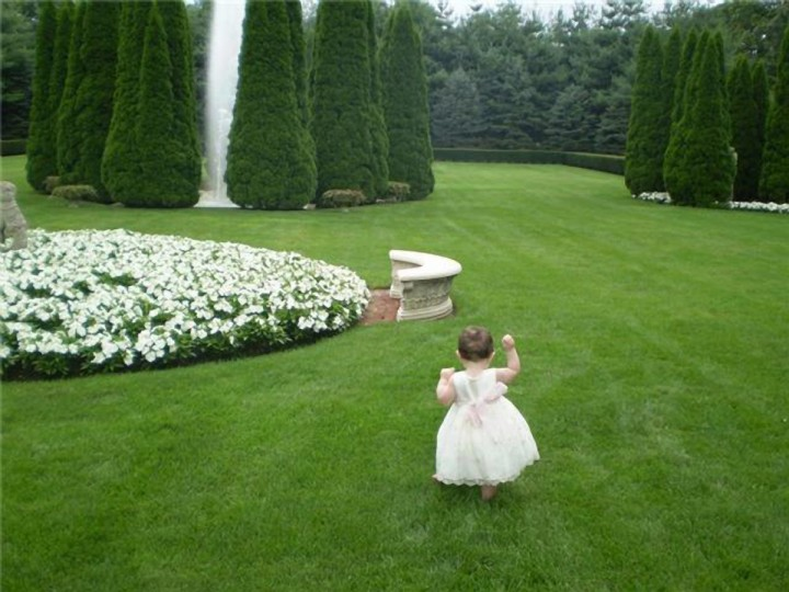"Special Occasions: ""Anna"" by Joanne Kaplan -- Joanne photographed her granddaughter Anna walking barefoot through the grass at a wedding in New York. ""Weddings are certainly one of the most photographed occasions for any family. Everyone has a camera and is sure to get a photo of the happy couple and the wedding party. Often the most memorable photos, however, are the candid moments caught away from the main event. Joanne wanted a photo of her granddaughter at her first ""dress up"" affair. This photo, taken with an Olympus FE 210, is clean and well-composed. It evokes a sense of childhood exploration and discovery."""