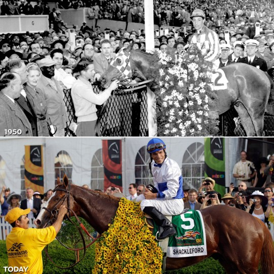 WINNER'S CIRCLE: TOP - Hill Prince and Eddie Arcaro in the Preakness winner's circle in 1950. (Edward Nolan/Baltimore Sun) *** BOTTOM - Jockey Jesus Castanon poses for a photo aboard Shackleford #5 after winning the 136th running of the Preakness Stakes. (Rob Carr/Getty Images)