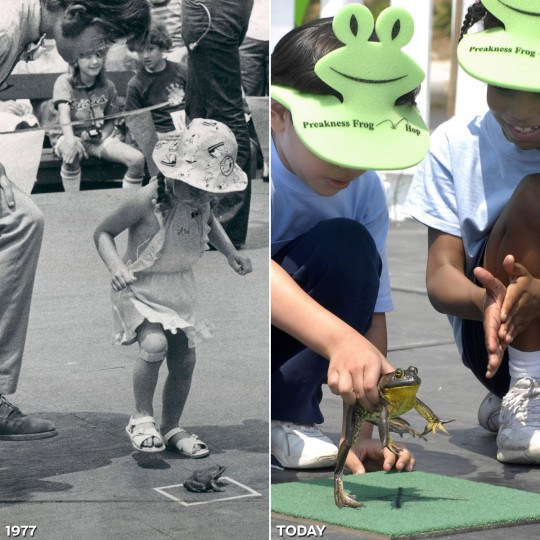 "FROG HOP: LEFT - Dr. Merrill Egorin and daughter Melanie Egorin, 3-1/2-years-old, coax their frog during the 1977 Preakness Frog Hop. (Baltimore Sun) *** RIGHT - Brian Lopez (L) and Jasmine Layne from Archbishop Borders put ""Jumper"" on the starting square at War Memorial Plaza on May 16, 2007. (Algerina Perna/Baltimore Sun)"