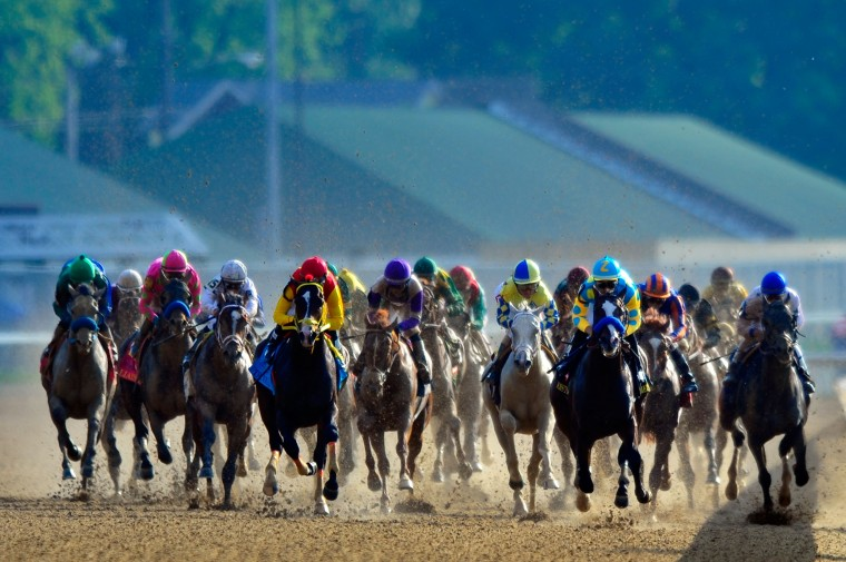 The field comes down the back stretch during the 138th running of the Kentucky Derby at Churchill Downs on May 5, 2012. (Jayme Price/Getty Images)