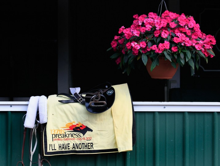The tack of I'll Have Another sits outside the barn after the horse trained at Pimlico Race Course on May 16, 2012 in Baltimore, Maryland. (Rob Carr/Getty Images)