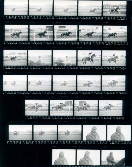 May 18, 1989 Negatives: Sunday Silence (13-22), Easy Goer on the track (26-36), and Wayne Lucas.