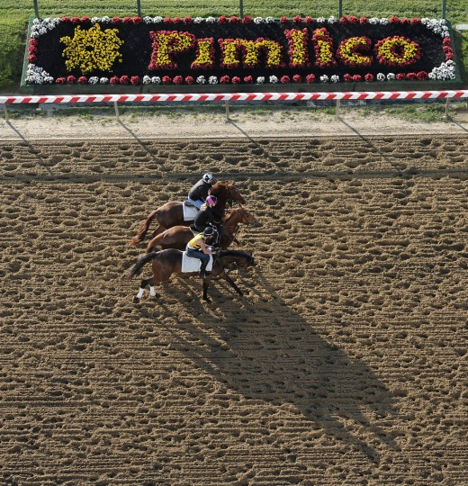 Riders take their horse for a Friday morning workout on the track at Pimlico Race Course. (Kim Hairston/Baltimore Sun)