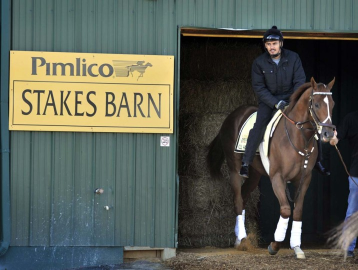 Exercise rider, Johnny Garcia leaves the Pimlico Stakes Barn with Kentucky Derby winner, I'll Have Another, as they head out for their morning workout at Pimlico Race Course on May 10, 2012. (Lloyd Fox/Baltimore Sun)