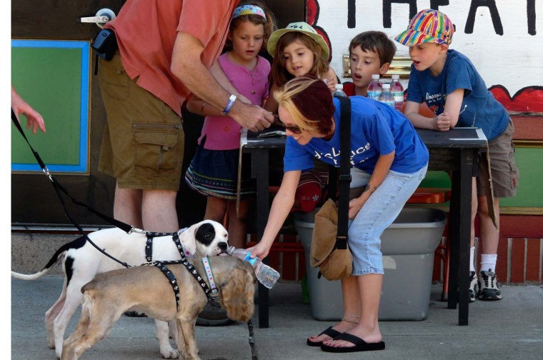 Elga Mae Lamason (left), 5, Annika Brockman, 6, Jake Lamason, 7, and Warner Brockman, 7, watch as Christina Charping gives dogs Stevie and Mollie a cool drink at the 2008 Sowebohemian Arts and Music Festival. (Karl Merton Ferron/Baltimore Sun, May 25, 2008).