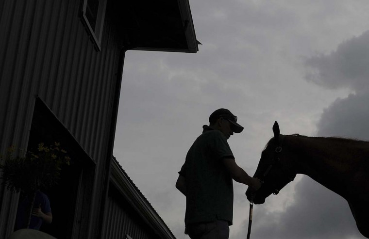 Kentucky Derby winner I'll Have Another is held by foreman Benjamin Perez as the horse gets a bath at Pimlico Race Course in Baltimore, Maryland, May 9, 2012. (Patrick Smith/Reuters)