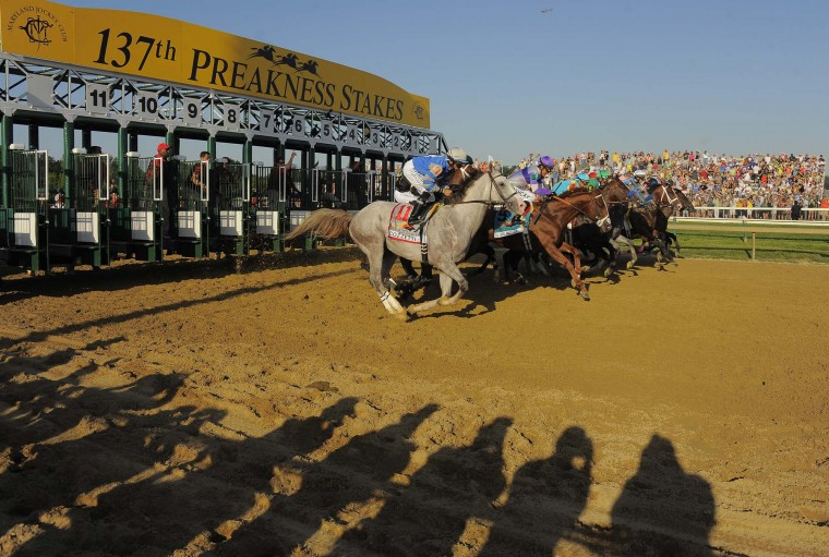 Spectators cast shadows on the sandy track as Kentucky Derby winner I'll Have Another (9), second from left horse, Optimizer (11) and the field of eleven horses breaks out of the starting gate in the 137th Preakness Stakes at Pimlico Race Course Sat, May. 19, 2012. (Karl Merton Ferron / Baltimore Sun Staff)