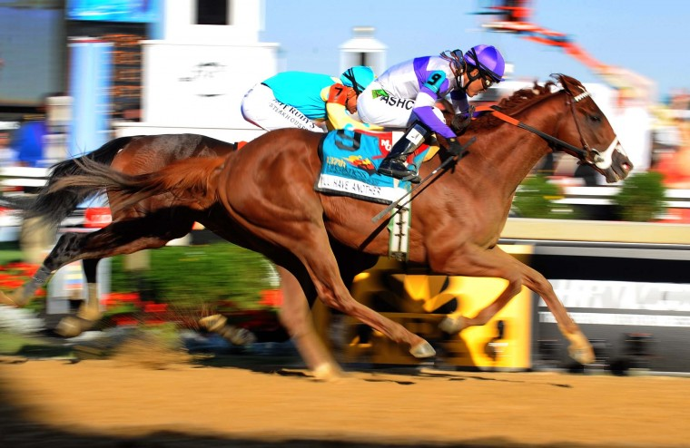 The finish of the 137th Preakness Stakes with I'll Have Another beating Bodemeister at the finish line. (Kenneth K. Lam/Baltimore Sun)