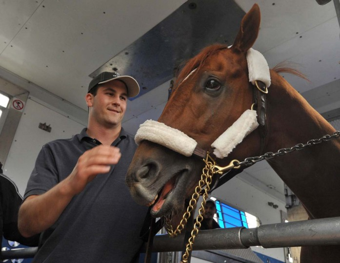 Tyler Cerim helps Derby winner I'll Have Another get settled into the horse van after arriving at BWI airport for the trip to Pimlico. (Amy Davis/Baltimore Sun)
