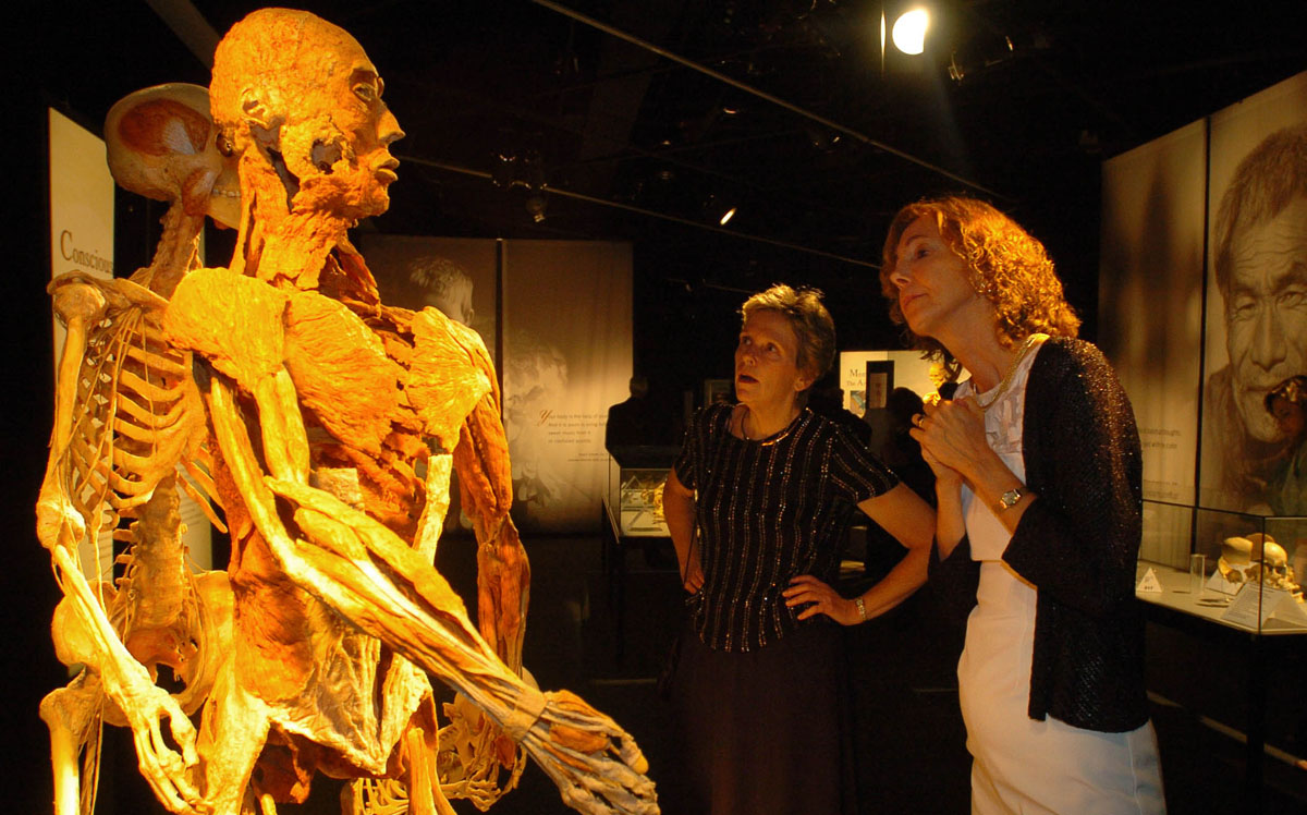 "June 21, 2008: Liz Citrin and Sue Lee view the ""Body Worlsd 2""exhibit at the Maryland Science Center Summer Solstice gala. (Karen Jackson/Baltimore Sun)"