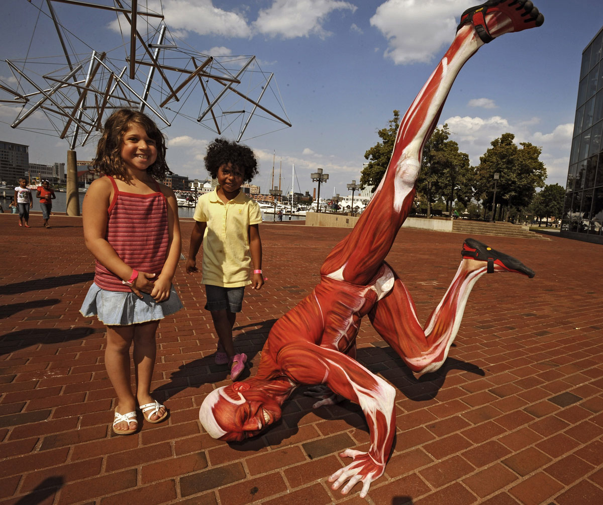 "June 19, 2008: Steve Golob of Federal Hill is ""Mr. Anatomy"" to promote the ""Body Worlds 2"" exhibition at the Maryland Science Center. The body paint job by make-up artist Jen Seidel-Walsh of Reisterstown took six hours. Rebeccah Blau (L), 7, of Clarksville, and Victoria Benitez (C), 5, of Columbia, watch as Mr. Anatomy poses for them. (Kenneth K. Lam/Baltimore Sun)"