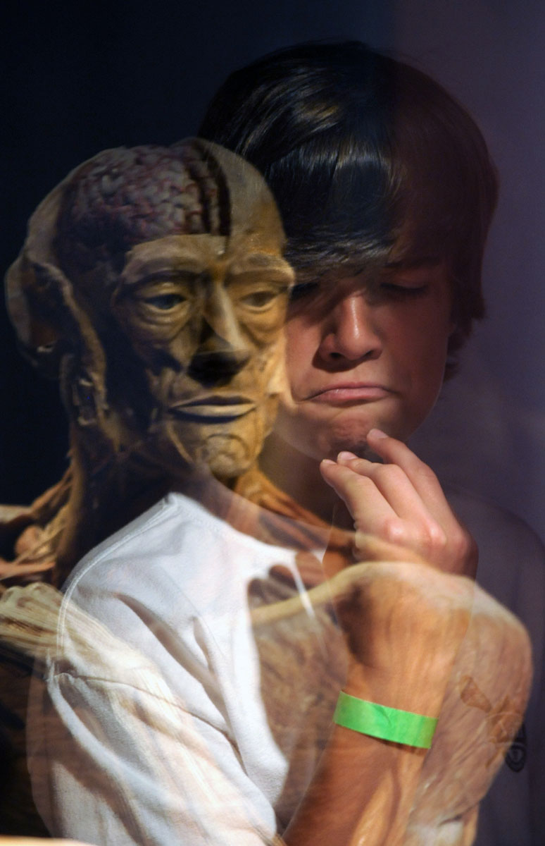 "June 5, 2008: Thirteen-year-old Bennett Bradley of Timonium ponders a reflection of ""The Ponderer"" during a visit to the ""Body Worlds 2"" exhibit at the Maryland Science Center. The bodies on display are donated for this purpose and have been transformed and preserved with a process called Plastination. The process halts decomposition and preserves the specimens for scientific and medical education. (Doug Kapustin/Baltimore Sun)"