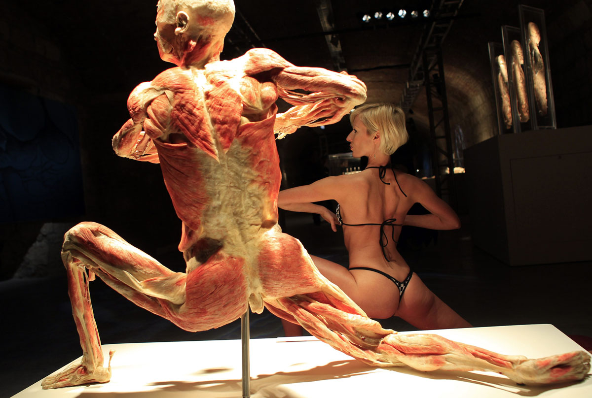 April 2, 2012: A model mimics a preserved human body on display at an exhibition in Budapest's Vam Design Center. The exhibition showcases dissected real human body specimens that are preserved through an innovative process and respectfully presented, giving visitors the opportunity to view the beauty and complexity of their own organs and systems. (Laszlo Balogh/Reuters)
