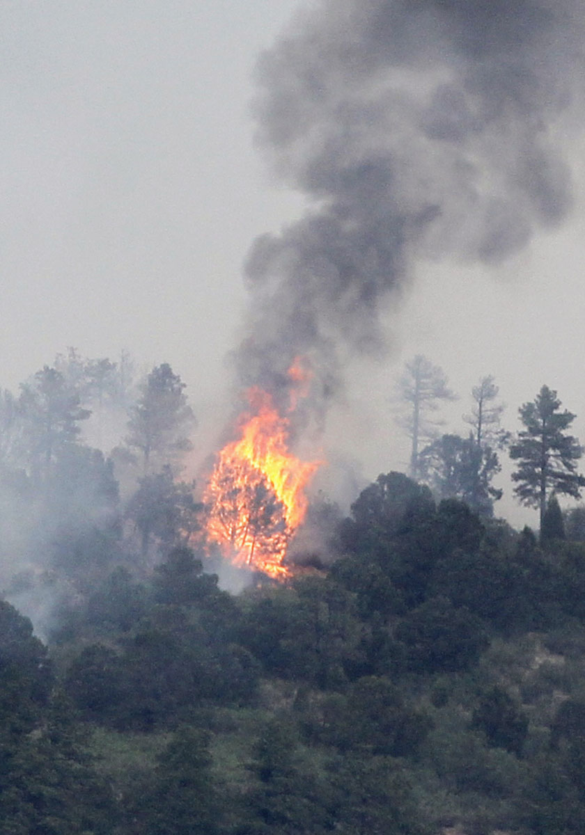 JUNE 24: Trees are engulfed with flames in a mountain subdivision in the Waldo Canyon fire west of Colorado Springs, Colorado June 24, 2012. (Rick Wilking/Reuters)