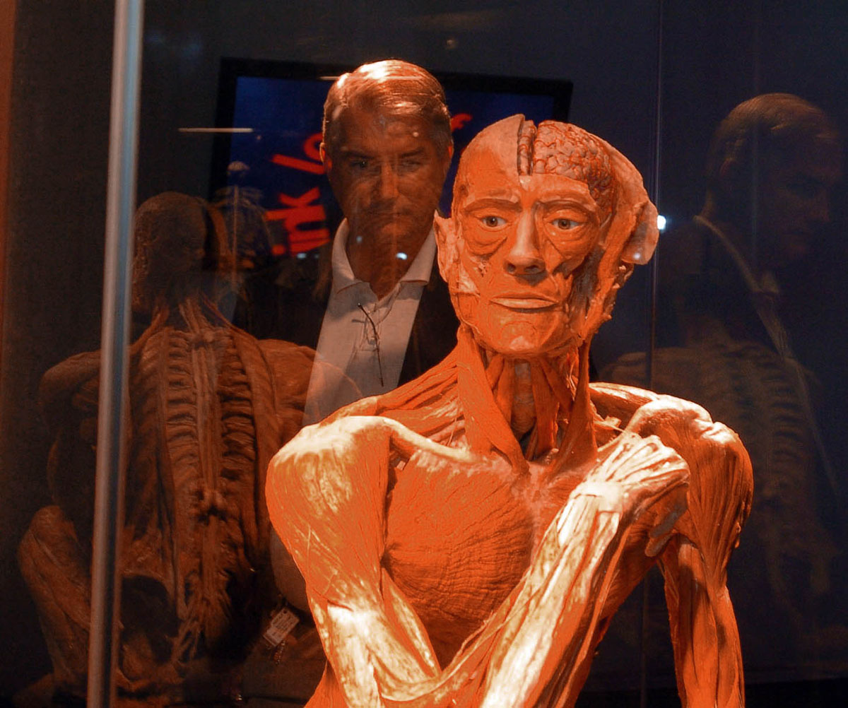 "June 21, 2008: Kevin Utz views ""The Ponderer"" in the ""Body Worlds 2"" exhibit at the Maryland Science Center Summer Solstice gala. (Karen Jackson/Baltimore Sun)"