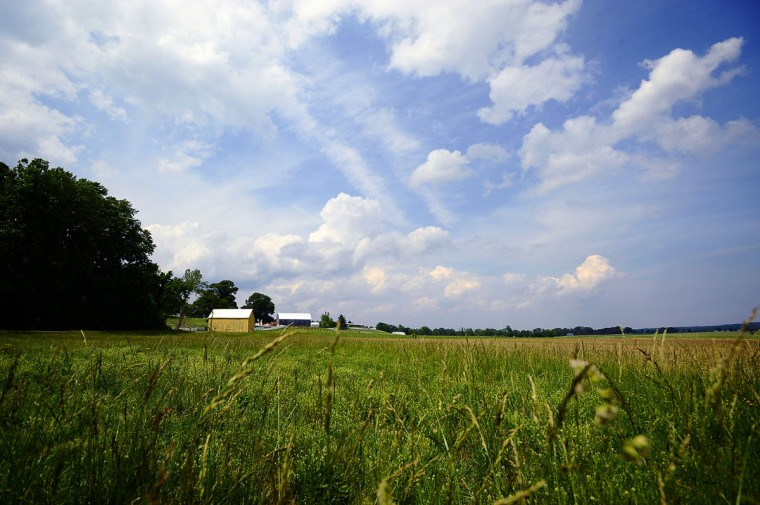 May 16, 2012: Puffy clouds drift above Serenity Farm, near the Patuxent River, where once British troops gathered during the War of 1812. (Karl Merton Ferron/Baltimore Sun)