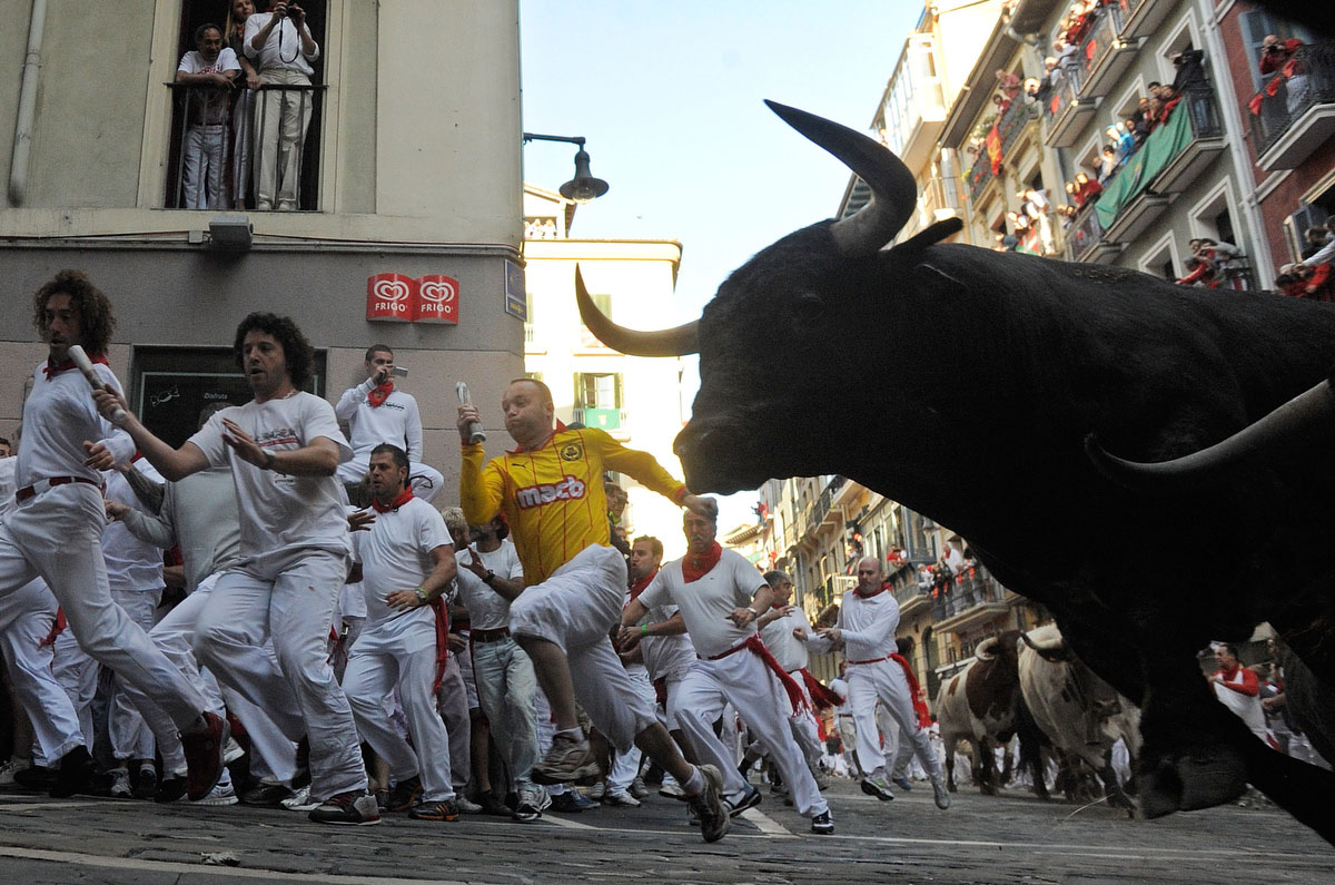 A fighting bull takes the curve during the third day of the San Fermin running-of-the-bulls on July 8, 2011 in Pamplona, Spain. Pamplona's famous Fiesta de San Fermin, which involves the running of the bulls through the historic heart of Pamplona for eight days. (Denis Doyle/Getty Images)