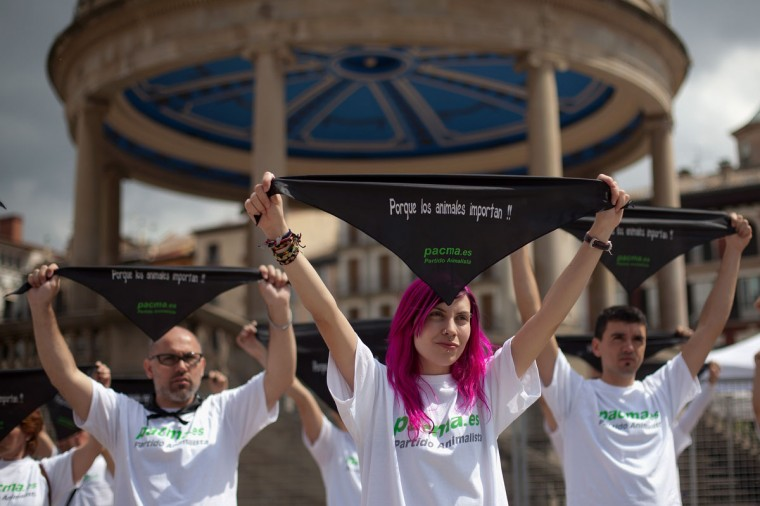 "Animal rights activist of ""Pacma"" party demonstrate at Plaza del Castillo during the first day of the San Fermin running of the bulls on July 7, 2012 in Pamplona, Spain. Handkerchief reads 'Because animals are important'. Pamplona's famous Fiesta de San Fermin, which involves the running of the bulls through the historic heart of Pamplona for eight days starting July 7th, was made famous by the 1926 novel of U.S. writer Ernest Hemmingway called ""The Sun Also Rises."" (Pablo Blazquez Dominguez/Getty Images)"