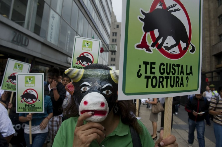 An activist wearing a bull mask takes part in a rally to protest against bullfighting, on April 17, 2012 in Mexico City. The demonstrators are demanding the Legislature to put a stop to bullfights in Mexico. (Yuri Cortez/AFP/Getty Images)