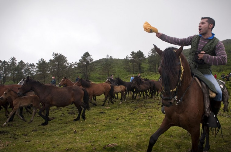 A villager rounds up wild horses on the hills of Sabucedo, some 40 kilometres from Santiago de Compostela, northwestern Spain, on July 6, 2012. (Miguel Riopa/AFP/Getty Images)