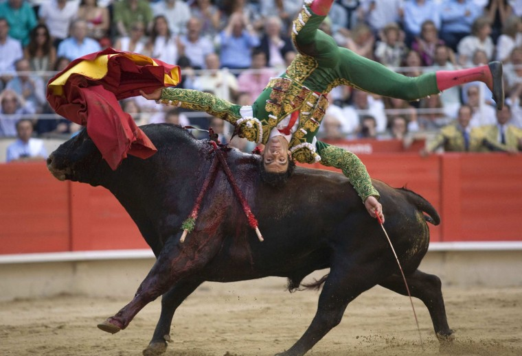 Spanish bullfighter Jose Tomas is tossed by a bull during a bullfight at Monumental bullring in Barcelona in this July 5, 2009 file photo. Lawmakers delivered the death blow to bullfighting in Catalonia on July 28, 2010, outlawing the centuries-old blood sport for the first time in a mainland region of Spain. (Carlos Cazalis/Reuters)