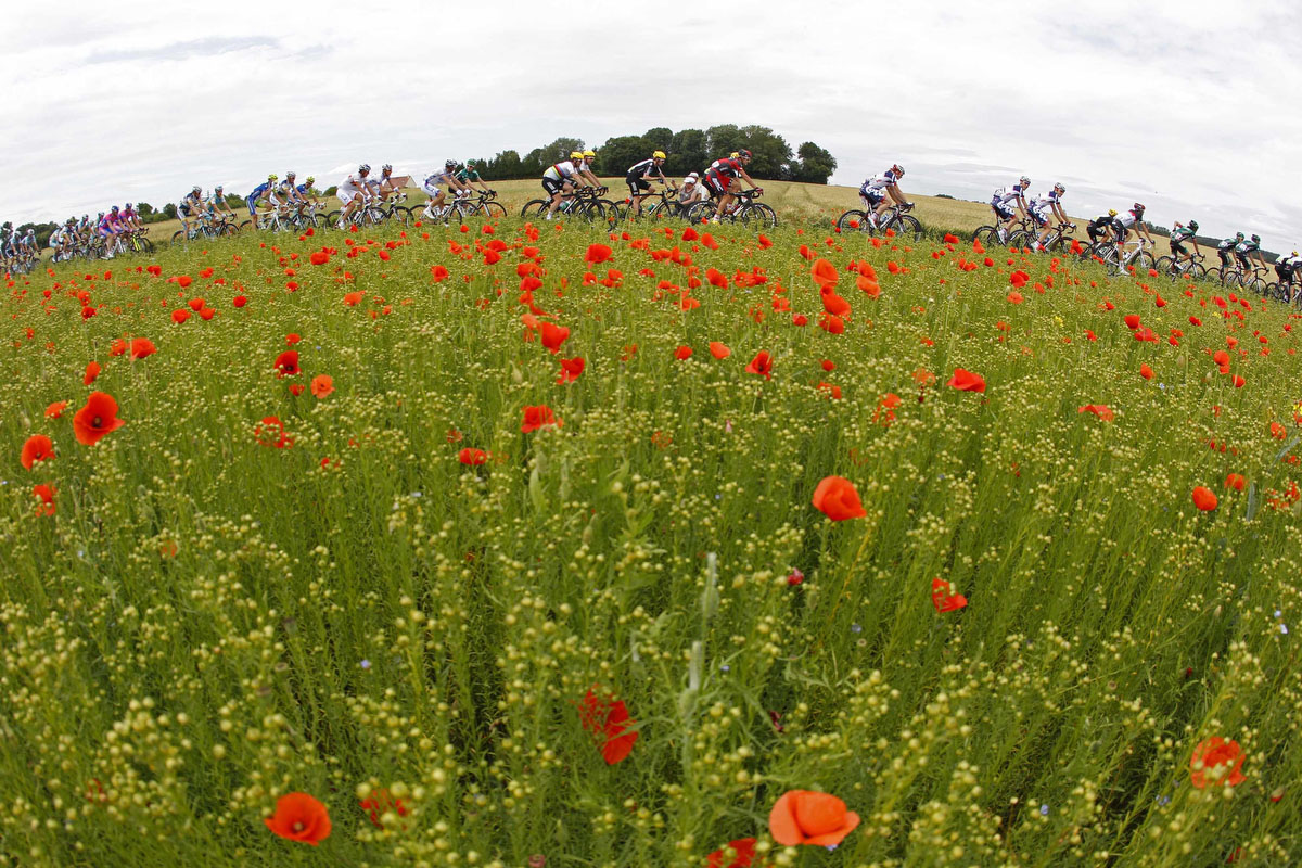 A pack of riders cycles during the fifth stage of the 99th Tour de France cycling race between Rouen and Saint-Quentin. (Bogdan Cristel/Reuters)