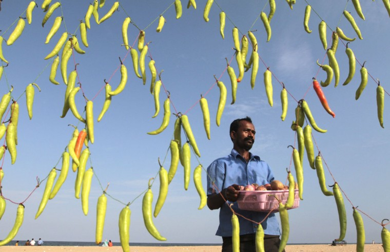 A vendor carries a basket containing onions and potatoes to prepare Chilli Bhaji, a local cuisine, at his stall decorated with green chillies to attract customers, on the Marina beach in the southern Indian city of Chennai (Babu/Reuters)