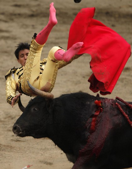 Peru's bullfighter Juan Carlos Cubas is tackled by a bull during a bullfight at Peru's historic Plaza de Acho bullring in Lima November 14, 2010. (Pilar Olivares/Reuters)