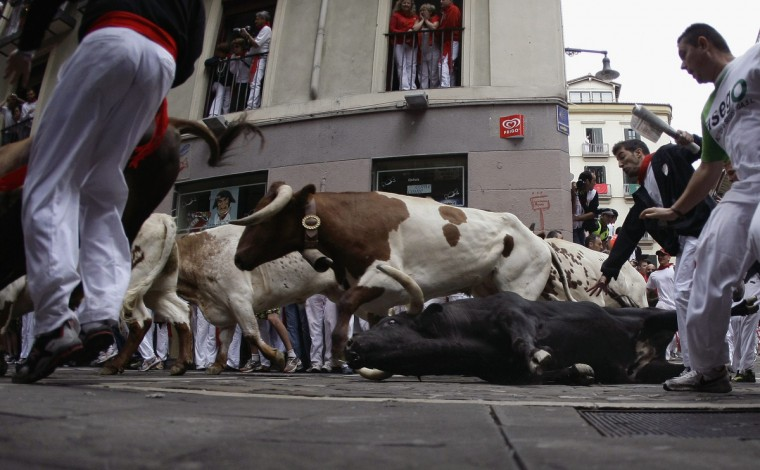 A Cebada Gago ranch fighting bull falls on Estafeta corner during the third Running Of The Bulls at the San Fermin festival in Pamplona. Three people, two from Britain and one from the U.S. were gored by Fugado (Runaway), a 545 kg (1,199 pounds) bull that broke from the pack after falling in Santo Domingo in a run that lasted three minutes and thirty-eight seconds. (Joseba Etxaburu/Reuters photo)