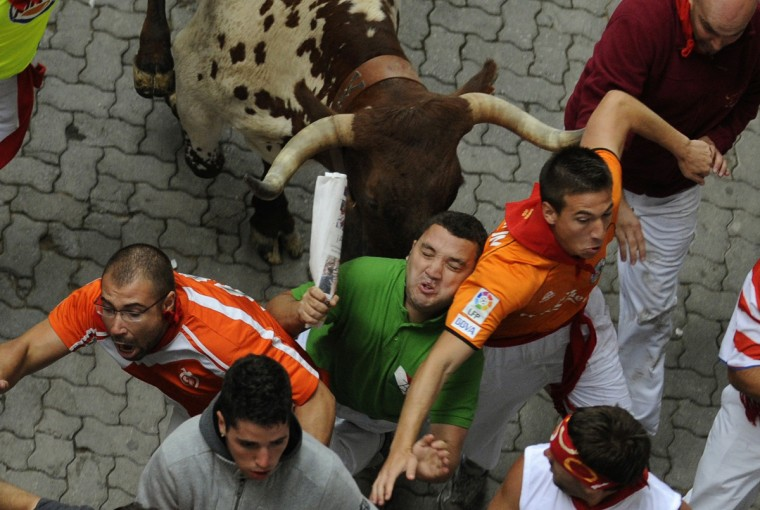 Runners sprint in front of a steer, used to guide Miura fighting bulls, near the entrance to the bullring on the second day of the running of the bulls in Pamplona. Various runners suffered light injuries in a run that lasted two minutes and twenty-eight seconds, according to local media. (Eloy Alonso/Reuters photo)