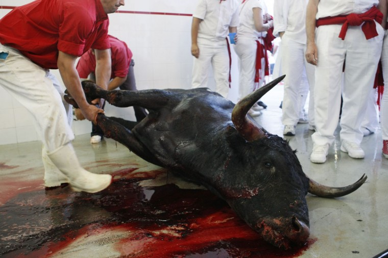 The body of Navajito (Little Blade) is dragged away to be taken to the slaughter house following the second bullfight after being killed by Spanish bullfighter Javier Castano at the San Fermin festival in Pamplona July 8, 2012. The 640-kg (1,430 lbs) Miura fighting bull had earlier raced ahead of the pack of fellow bulls during Sunday morning's Running of the Bulls, scattering runners in Estafeta Street and landing two in hospital. (Joseba Etxaburu/Reuters)