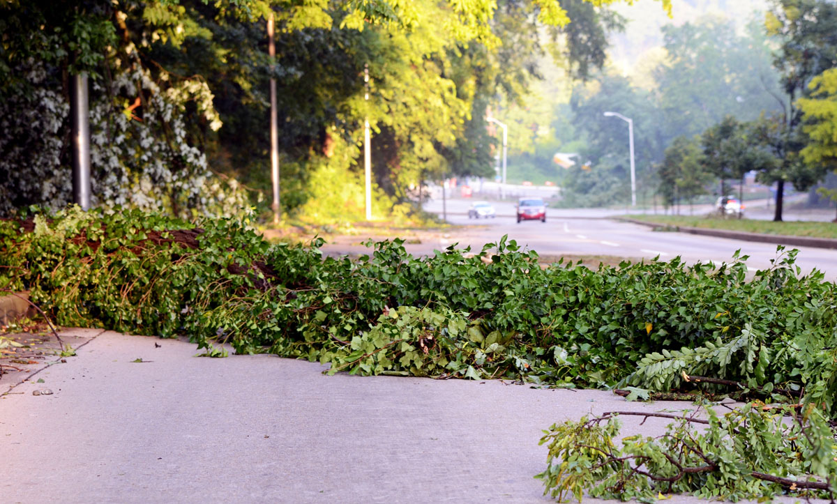 What is typically three lanes on Northern Parkway headed from Mt. Washington towards Roland Park was turned into one by a large tree that fell intro the road. There were many such trees all along that stretch of road Saturday morning. (Jon Sham/Patuxent Homestead)