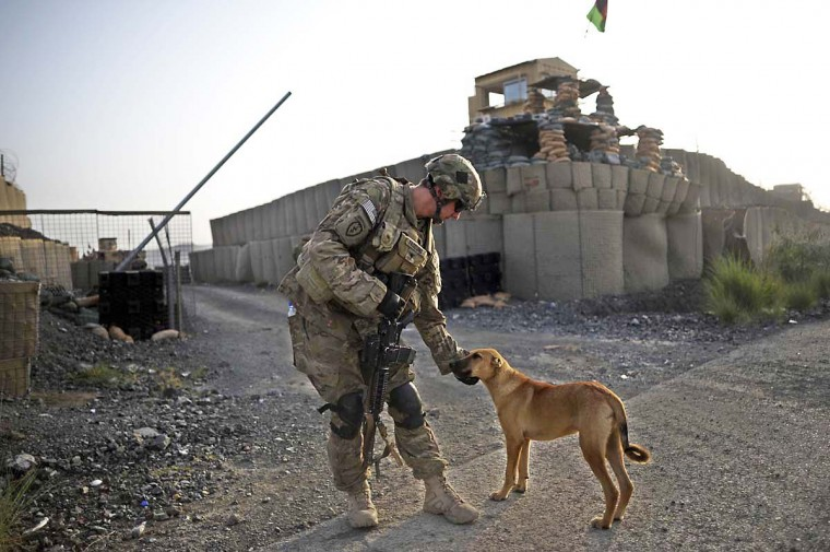 A member of the 1st Platoon Comanche Company of the US Army pets a dog at a checkpoint in the Combat Outpost Lakon in Buwri Tana District, Khost Province. (Jose Cabezas/Getty Images)