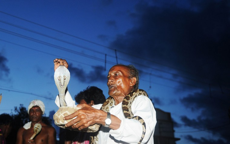 Indian snake charmers show their skills during a snake festival in the city of Bishnupur around 210 KM north west of Kolkata. The festival is organized as a part of special worship to the Hindu mythology goddess Manasha, the god of snakes. (Dibyangshu Sarkar/AFP/Getty Images)