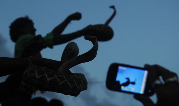 A cell phone is used to take pictures of Indian snake charmers show their skills during a snake festival in the city of Bishnupur around 210 KM north west of Kolkata. The festival is organized as a part of special worship to the Hindu mythology goddess Manasha, the god of snakes. (Dibyangshu Sarkar/AFP/Getty Images)