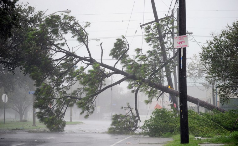 A fallen tree blocks a road in New Orleans, Louisiana on August 29, 2012, as Hurricane Isaac battered the city and surrounding region. (Frederic J. Brown/AFP/Getty Images)