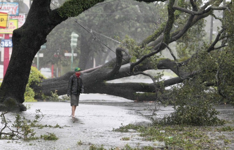 A man stands in front of an uprooted oak tree on Louisiana Avenue as Hurricane Isaac makes land fall in New Orleans, Louisiana. Hurricane Isaac drove water over the top of a levee on the outskirts of New Orleans on Wednesday, but the multibillion-dollar barriers built to protect the city itself after the 2005 Katrina disaster were not breached, officials said. (Sean Gardner/Reuters)
