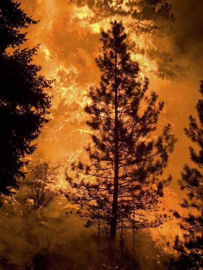 A forest fire burns in Boise National Forest near the community of Featherville, Idaho. (Kari Greer/U.S. Forest Service)
