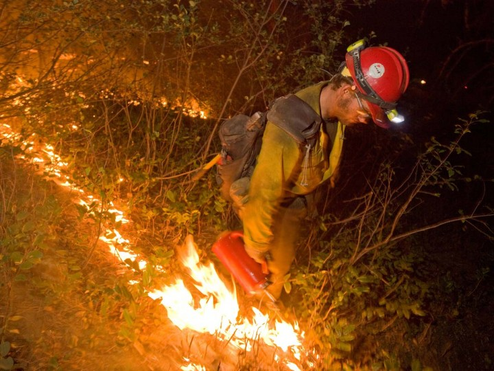 A firefighter sets fire to brush during a burn operation in Boise National Forest near the community of Featherville, Idaho. (Kari Greer/U.S. Forest Service)