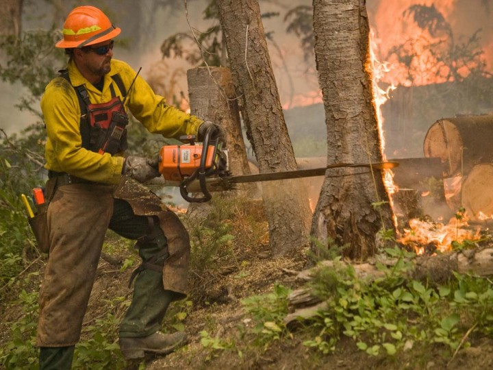 A firefighter uses a chainsaw as he battles the Trinity Ridge Fire in Boise National Forest near Featherville, Idaho. (Kari Greer/US Forest Service)